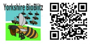 Yorkshire BioBlitz - Logo and QRCode